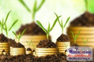 چگونه یک سرمایه گذار موفق شویم