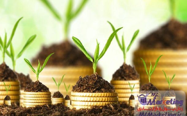 چگونه یک سرمایه گذار موفق شویم؟